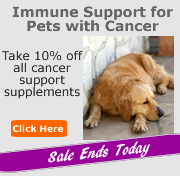 Save on Pet Supplements
